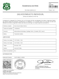 imagen_solvoconducto-individual-tratamientos-medicos